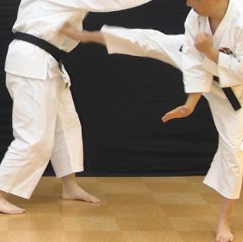 少林寺拳法の技・テクニックのコツ・ポイント 1